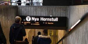 NyaHornstull2